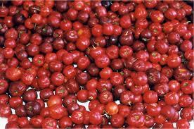 Acerola - Rica em Vitamina C