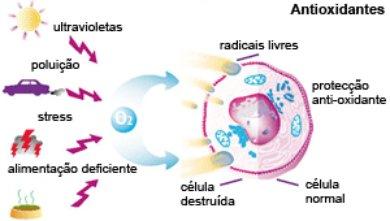 Você sabe o que são antioxidantes?